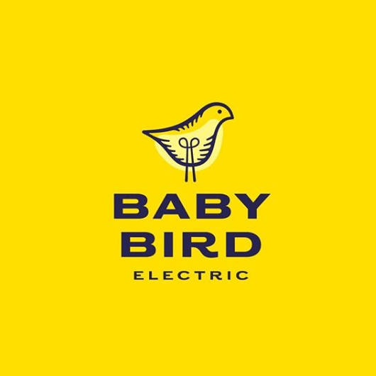 baby-bird-electric-by-hamptonhargreaves